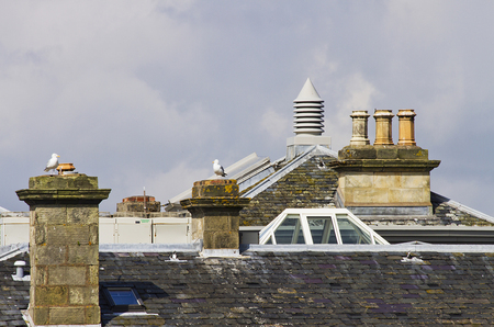 7 chimneys and roofs st andrews