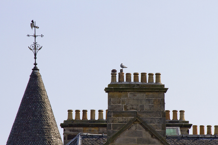 2 chimneys and roofs st andrews